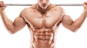 Musculin active - für Muskelmasse - bestellen - Deutschland - test