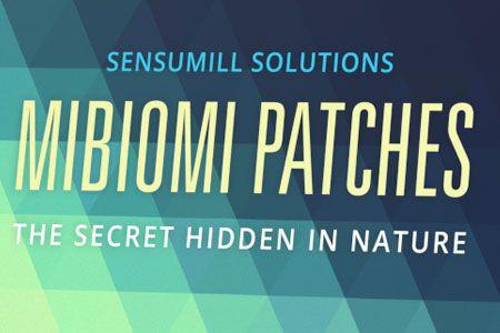 Mibiomi Patches - zum Abnehmen - preis  - kaufen - test